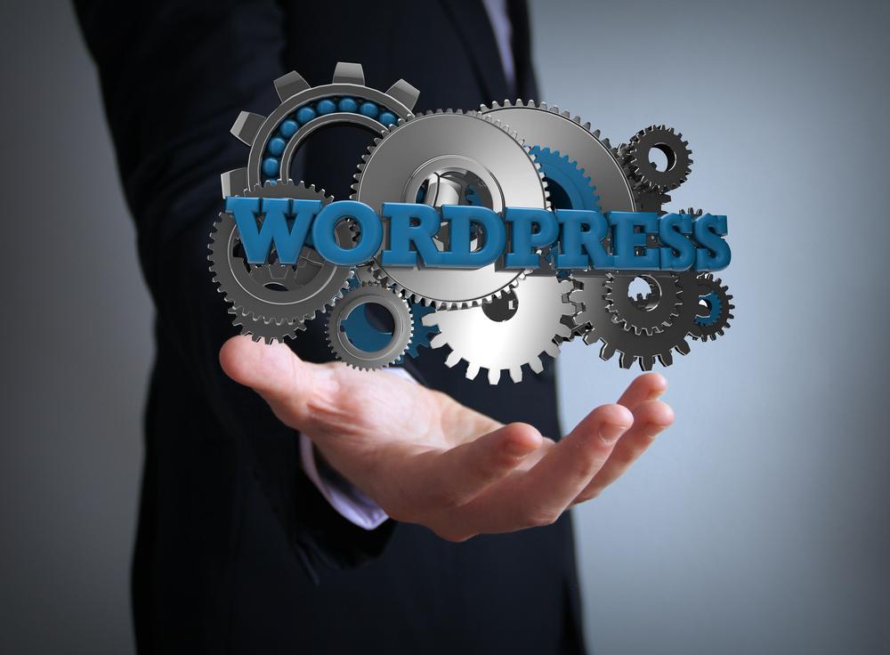 Hoe kun je wordpress gebruiken 1